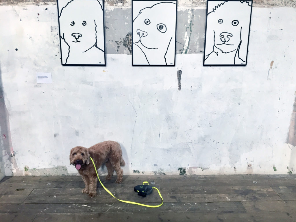 Pico poses in front of more dog portraits by Babak Ganjei.