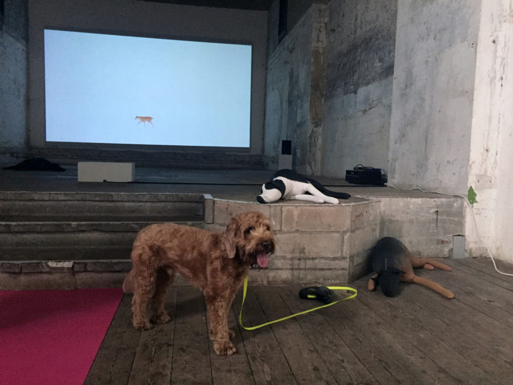 Pico poses in front of a large screen showing Martin Creed's <i>Work No. 670 Orson & Sparky</i> (2007).