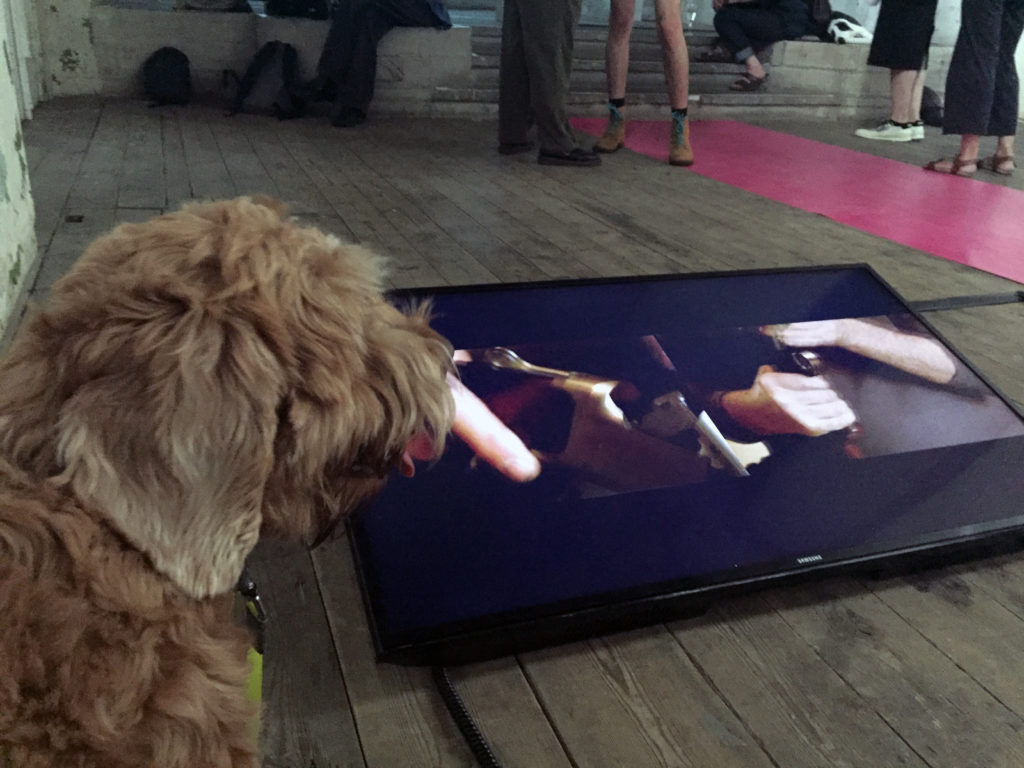 Pico watches a video work he appreciates being installed on the floor.