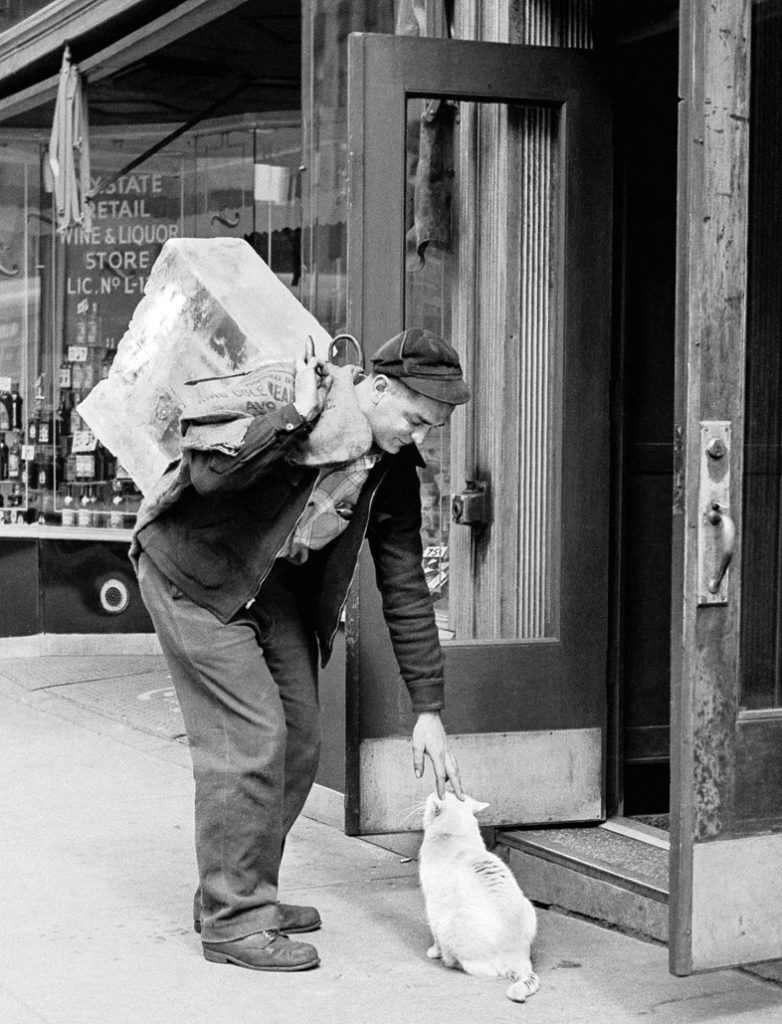 Walter Chandoha, a man pets a cat on the streets of New York (1950). Photo courtesy of TASCHEN,©2019 Walter Chandoha.
