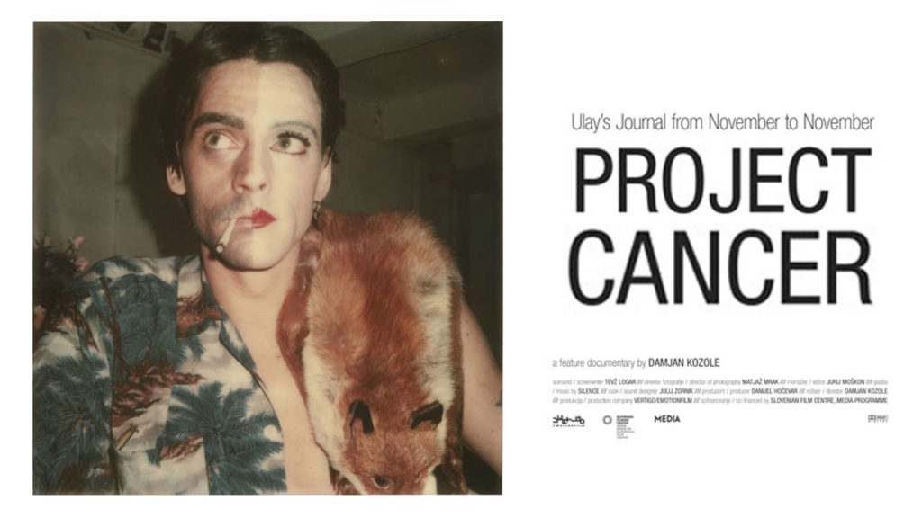 <em>Ulay: Project Cancer</eM>, directed by Damjan Kozole in 2013.